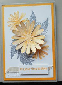 Daisy-Lane-2nd-May-Blog-W-220x300